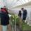 ストック栽培管理をテーマとした松江市花き若手生産者栽培研修会を開催(島根県内農業の紹介シリーズ No.12)